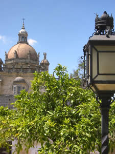 Private Minibus Excursions and Trips to Jerez, Spain
